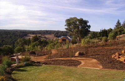 Tree Planting and Mulch Landscaping Oakford