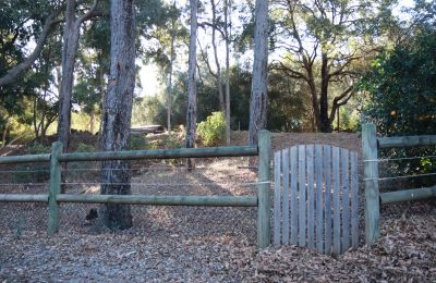 Fence with Wooden Pedestrian Gate