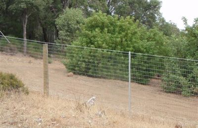 Post and Wire Kangaroo Fence Martin