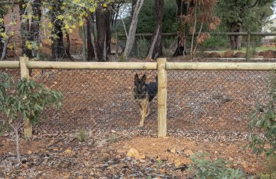 Single Post and Rail Black Chainmesh